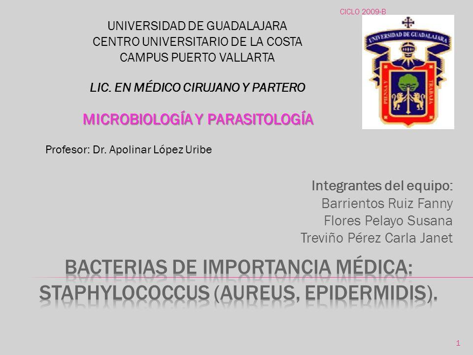 Bacterias de importancia médica: staphylococcus (aureus, epidermidis).