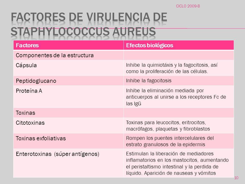 Factores de virulencia de Staphylococcus aureus