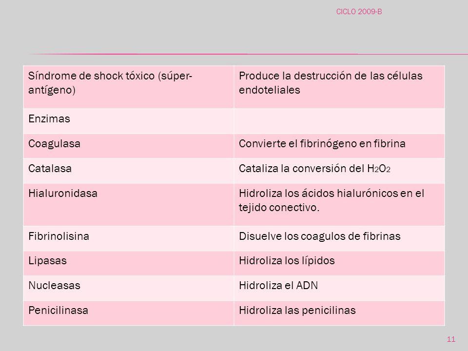 Síndrome de shock tóxico (súper-antígeno)