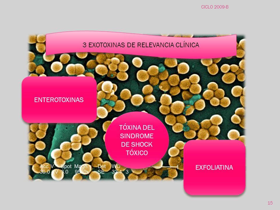 3 EXOTOXINAS DE RELEVANCIA CLÍNICA