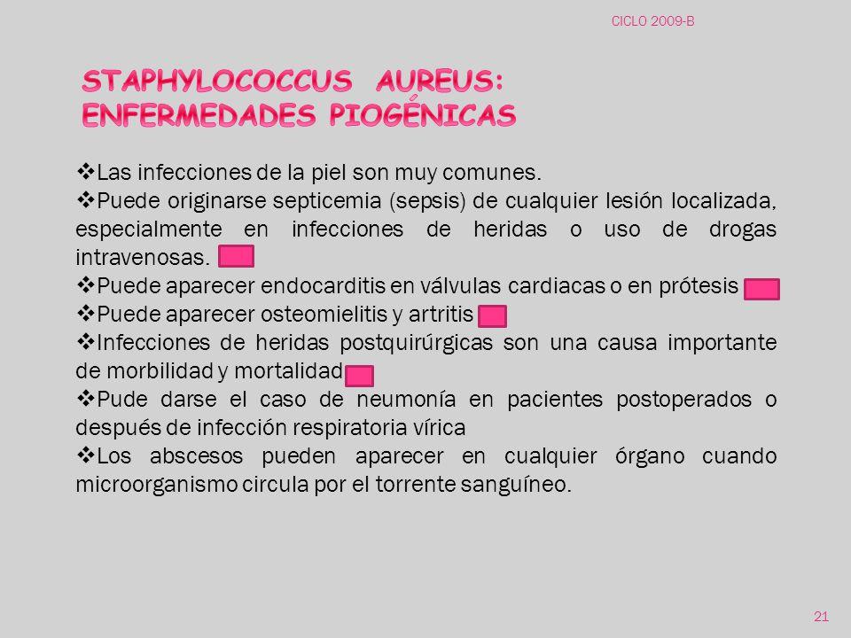 STAPHYLOCOCCUS AUREUS: ENFERMEDADES PIOGÉNICAS