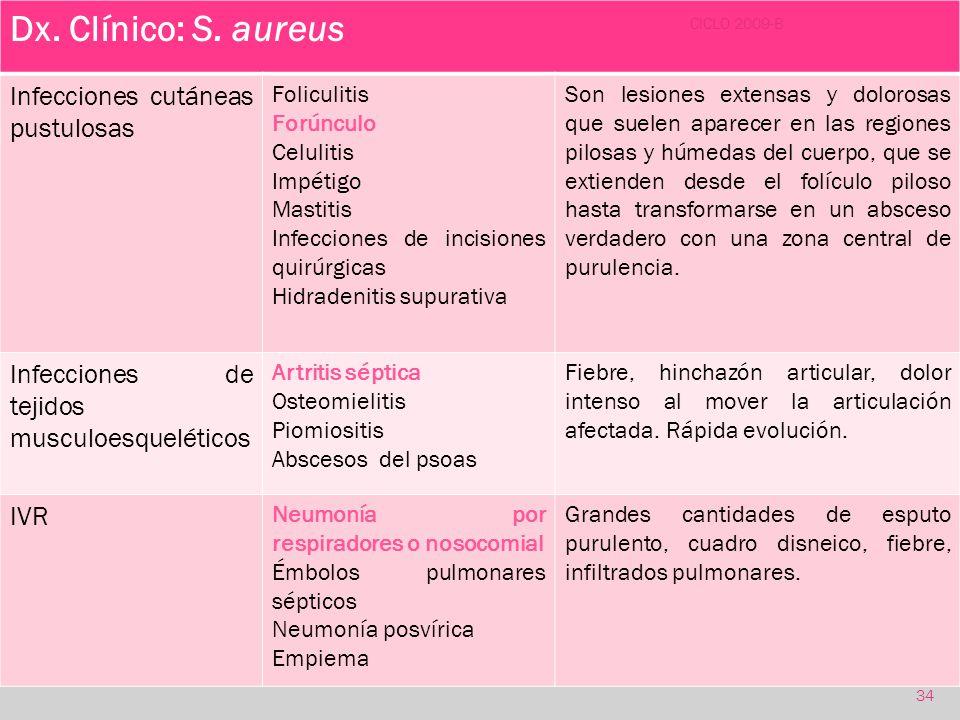 Dx. Clínico: S. aureus Infecciones cutáneas pustulosas
