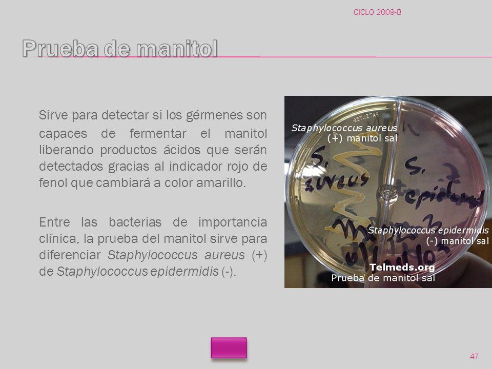 CICLO 2009-B Prueba de manitol.