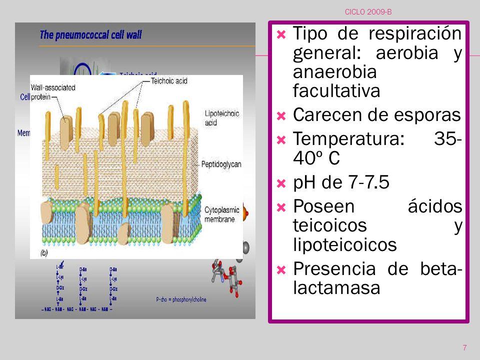 Tipo de respiración general: aerobia y anaerobia facultativa