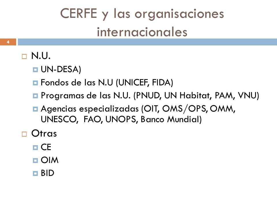 CERFE y las organisaciones internacionales
