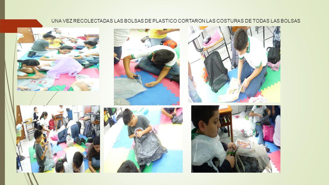 UNA VEZ RECOLECTADAS LAS BOLSAS DE PLASTICO CORTARON LAS COSTURAS DE TODAS LAS BOLSAS