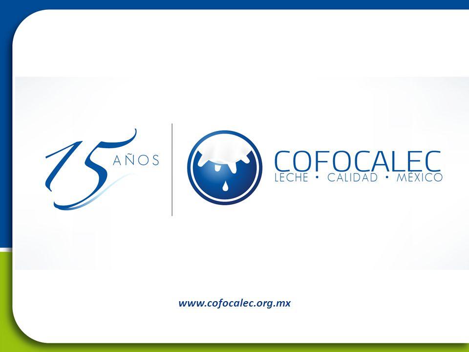 www.cofocalec.org.mx