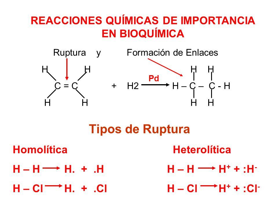 Tipos de Ruptura REACCIONES QUÍMICAS DE IMPORTANCIA EN BIOQUÍMICA