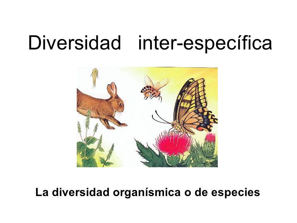 Diversidad inter-específica
