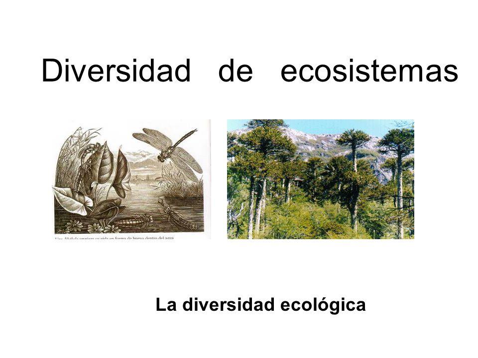 Diversidad de ecosistemas