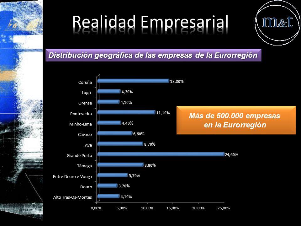 Realidad Empresarial Distribución geográfica de las empresas de la Eurorregión. Más de 500.000 empresas.