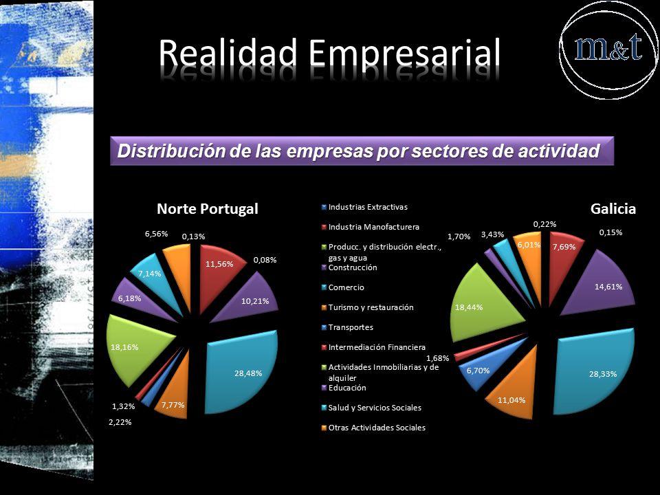 Realidad Empresarial Distribución de las empresas por sectores de actividad