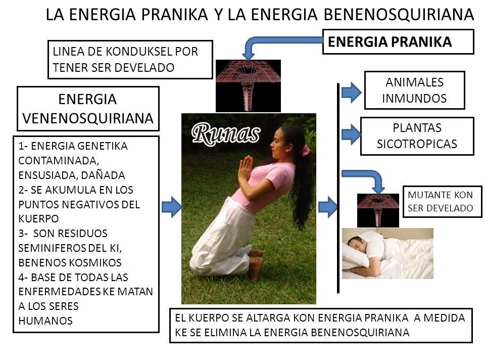 LA ENERGIA PRANIKA Y LA ENERGIA BENENOSQUIRIANA