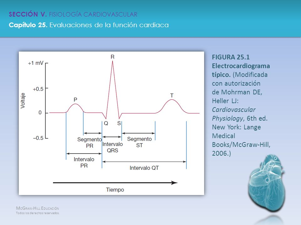 FIGURA 25.1 Electrocardiograma típico. (Modificada con autorización