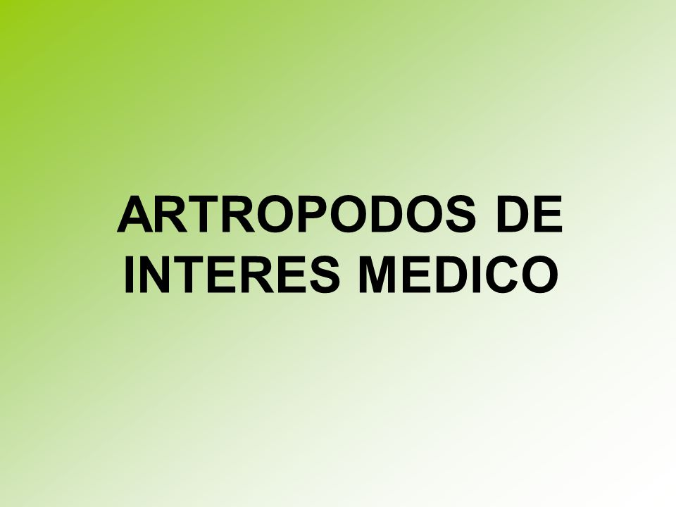 ARTROPODOS DE INTERES MEDICO