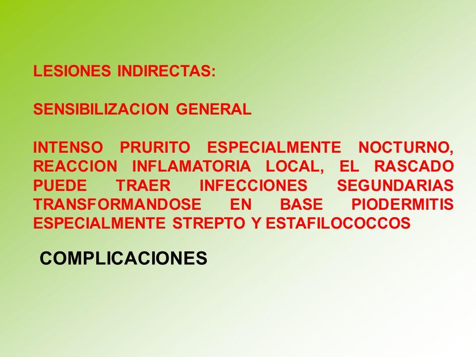 COMPLICACIONES LESIONES INDIRECTAS: SENSIBILIZACION GENERAL