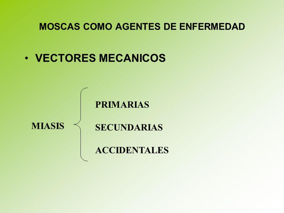 MOSCAS COMO AGENTES DE ENFERMEDAD