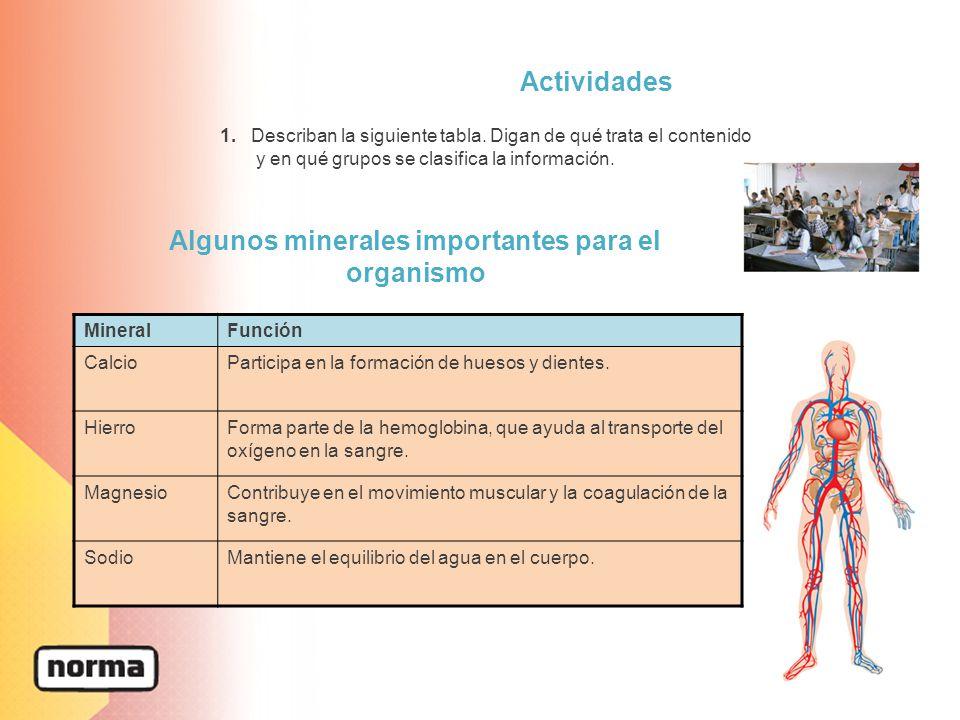 Algunos minerales importantes para el organismo