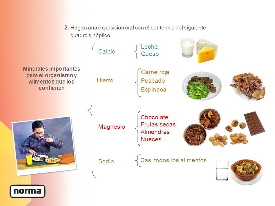 Minerales importantes para el organismo y alimentos que los contienen