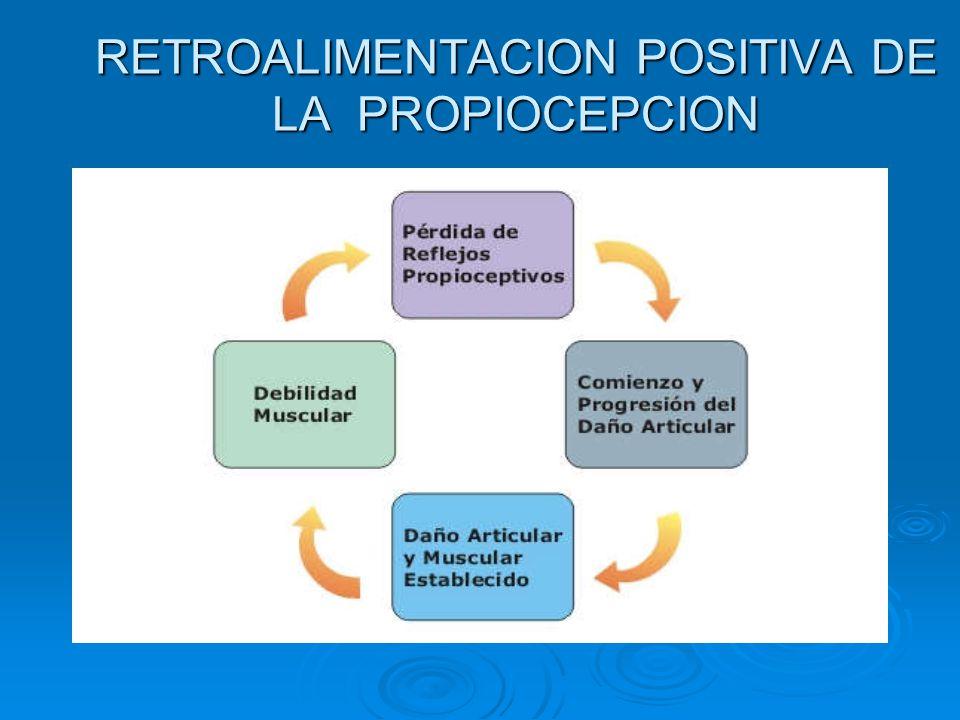 RETROALIMENTACION POSITIVA DE LA PROPIOCEPCION