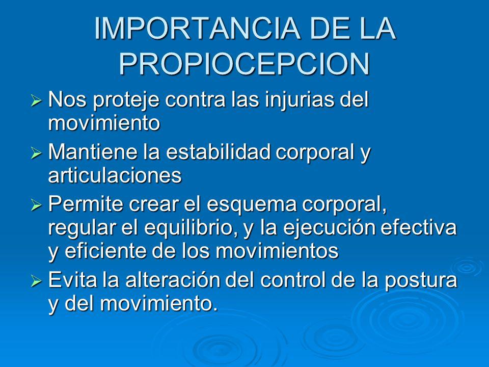 IMPORTANCIA DE LA PROPIOCEPCION