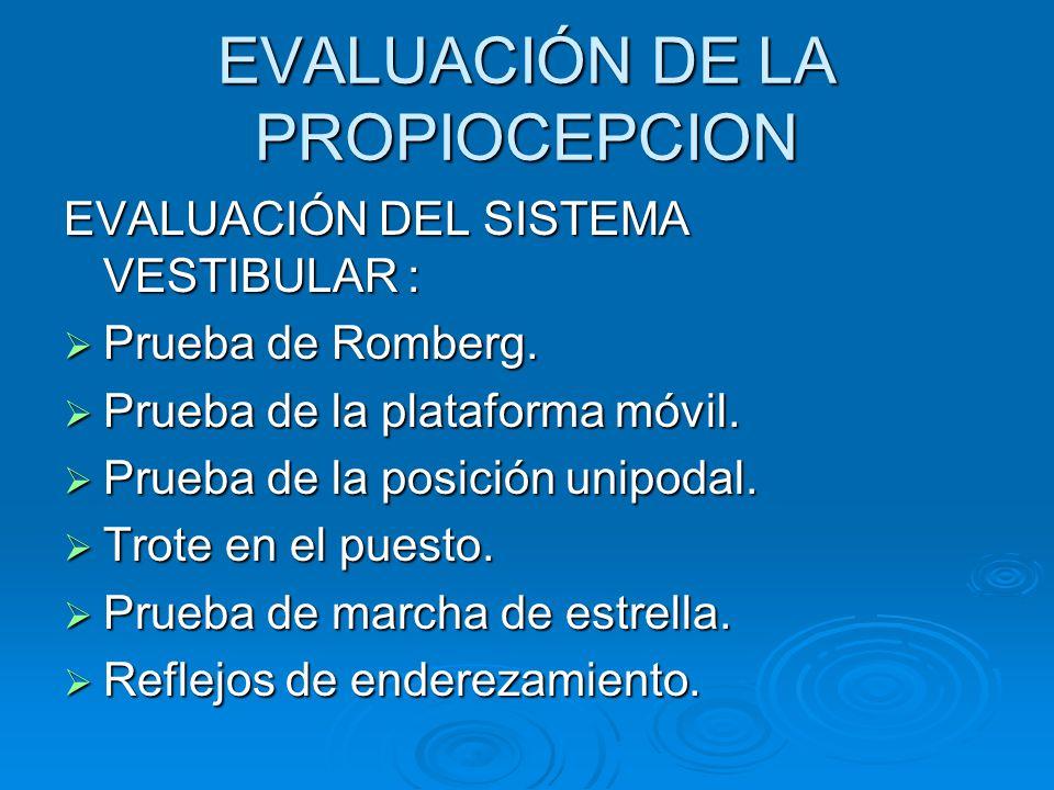 EVALUACIÓN DE LA PROPIOCEPCION