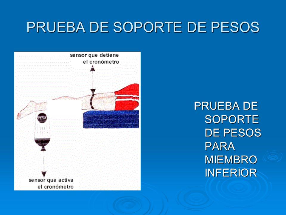 PRUEBA DE SOPORTE DE PESOS