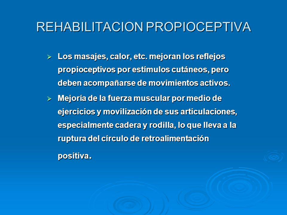 REHABILITACION PROPIOCEPTIVA