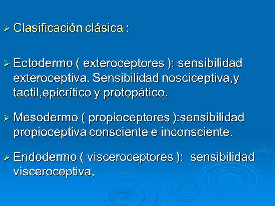 Clasificación clásica :