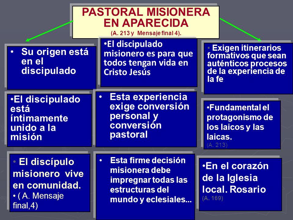 PASTORAL MISIONERA EN APARECIDA