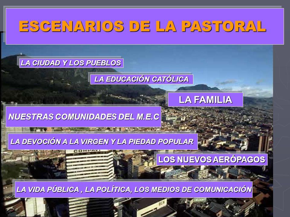 ESCENARIOS DE LA PASTORAL