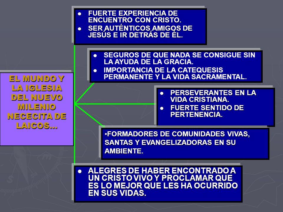 EL MUNDO Y LA IGLESIA DEL NUEVO MILENIO NECECITA DE LAICOS…