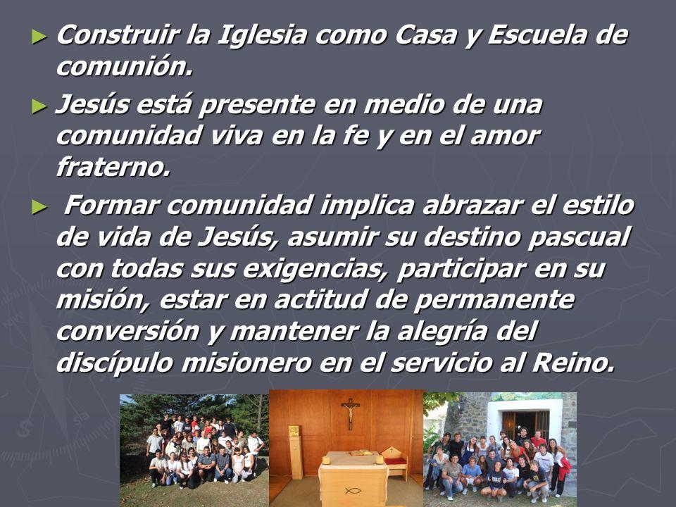 Construir la Iglesia como Casa y Escuela de comunión.