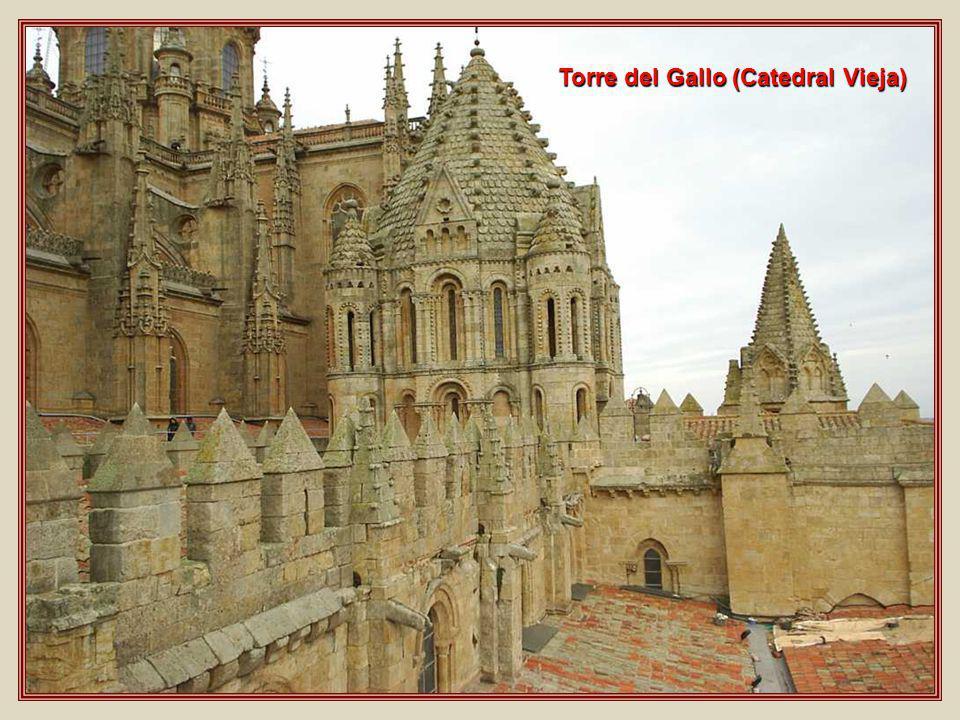 Torre del Gallo (Catedral Vieja)