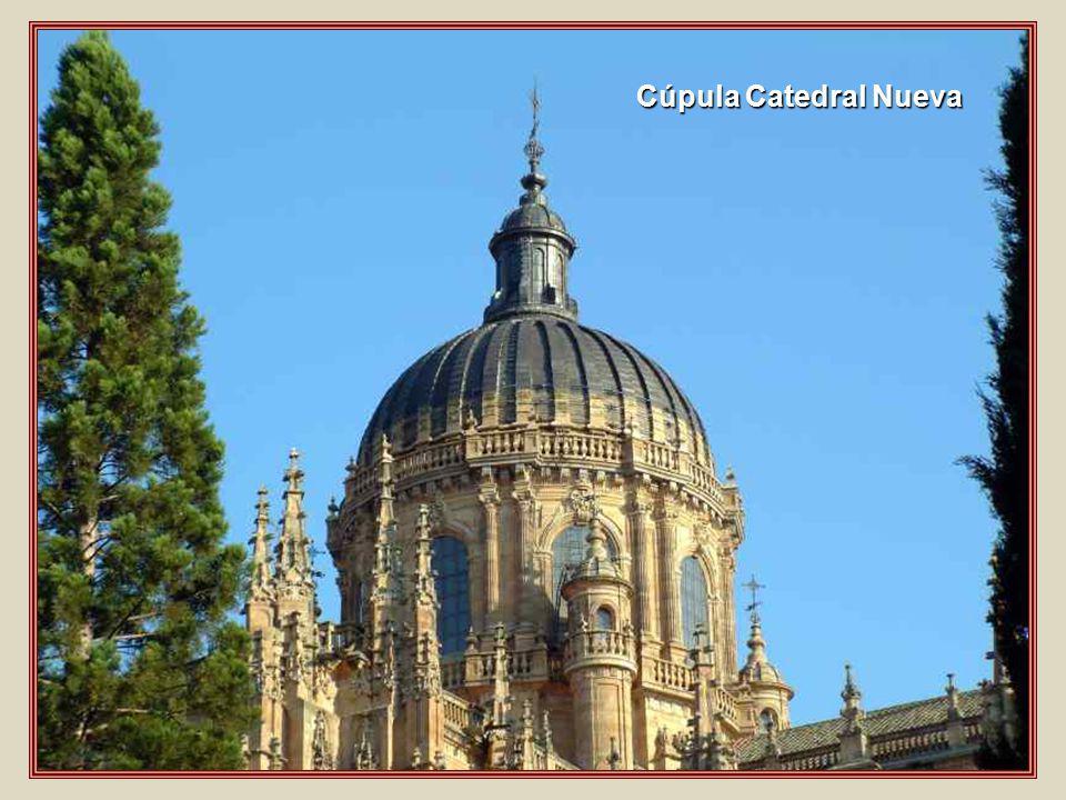 Cúpula Catedral Nueva