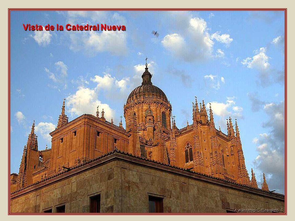 Vista de la Catedral Nueva