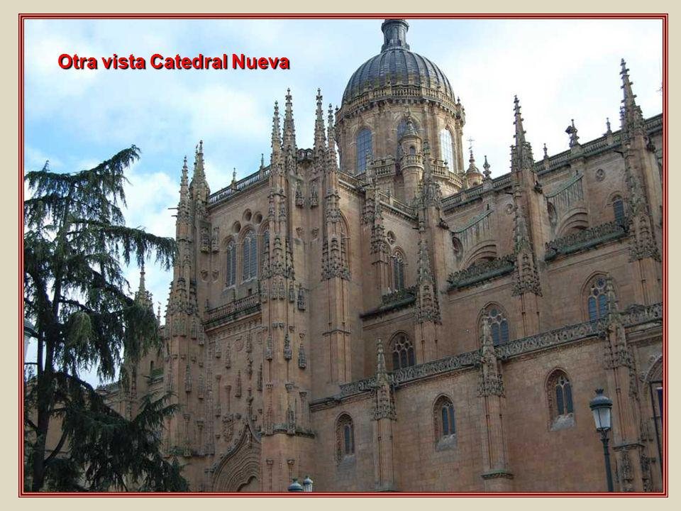 Otra vista Catedral Nueva
