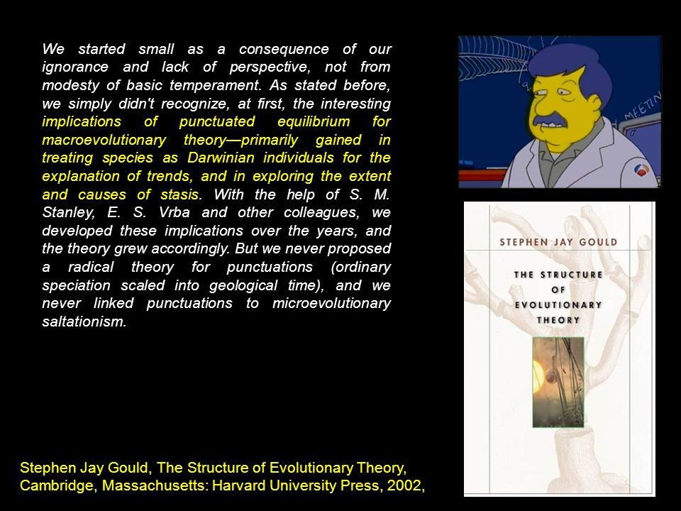 We started small as a consequence of our ignorance and lack of perspective, not from modesty of basic temperament. As stated before, we simply didn t recognize, at first, the interesting implications of punctuated equilibrium for macroevolutionary theory—primarily gained in treating species as Darwinian individuals for the explanation of trends, and in exploring the extent and causes of stasis. With the help of S. M. Stanley, E. S. Vrba and other colleagues, we developed these implications over the years, and the theory grew accordingly. But we never proposed a radical theory for punctuations (ordinary speciation scaled into geological time), and we never linked punctuations to microevolutionary saltationism.