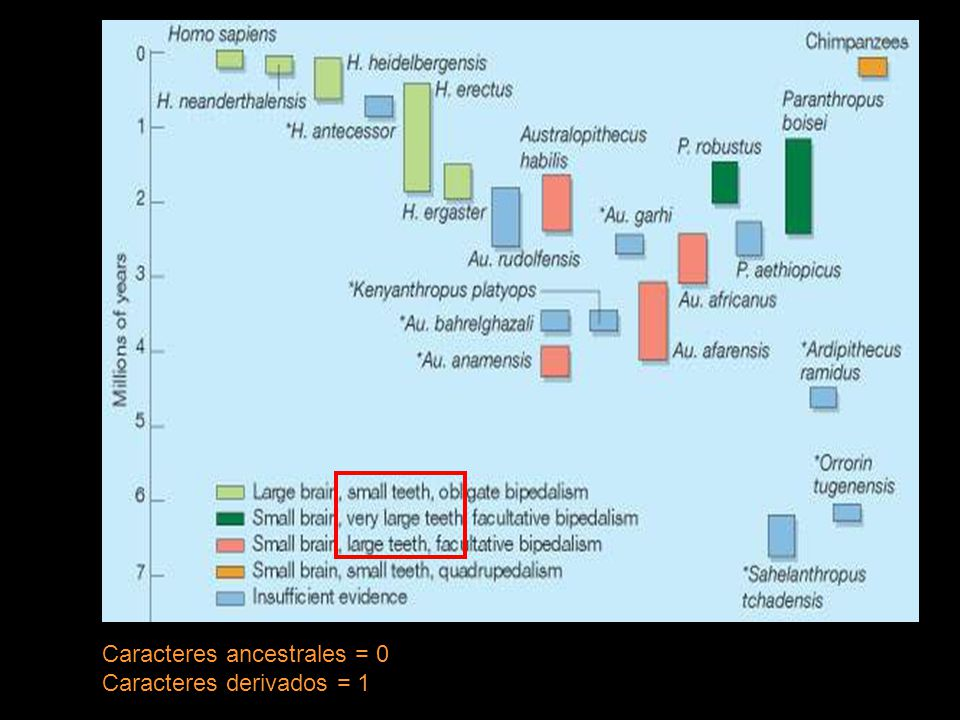 Caracteres ancestrales = 0