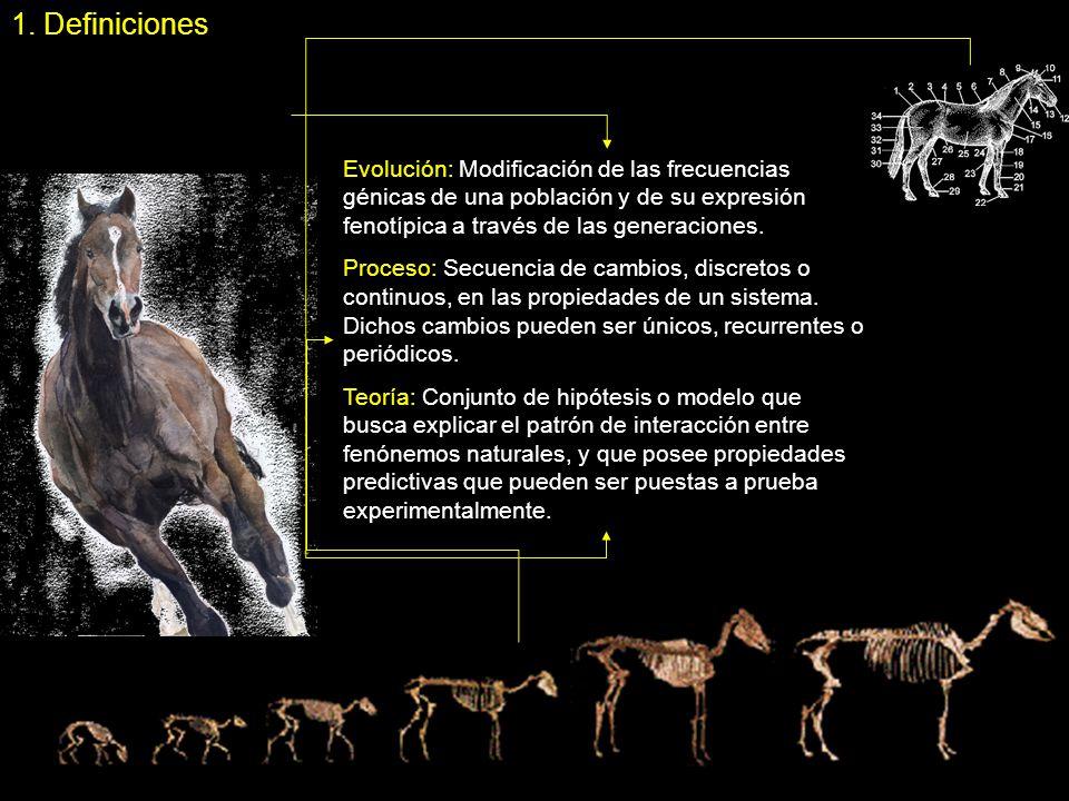 1. Definiciones Evolución: Modificación de las frecuencias génicas de una población y de su expresión fenotípica a través de las generaciones.