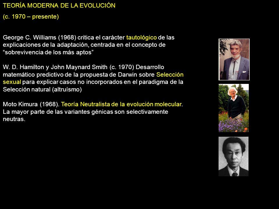 TEORÍA MODERNA DE LA EVOLUCIÓN