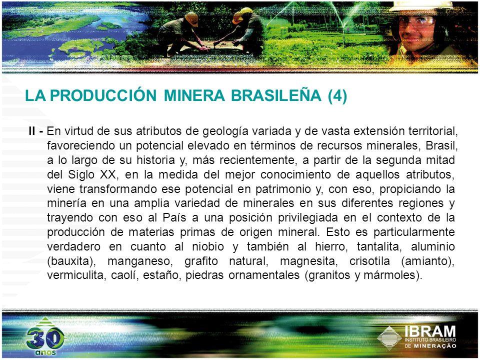 LA PRODUCCIÓN MINERA BRASILEÑA (4)