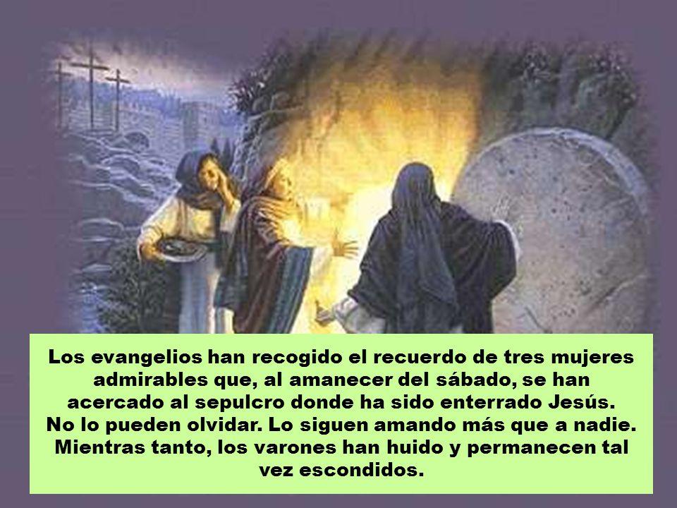 Los evangelios han recogido el recuerdo de tres mujeres admirables que, al amanecer del sábado, se han acercado al sepulcro donde ha sido enterrado Jesús.