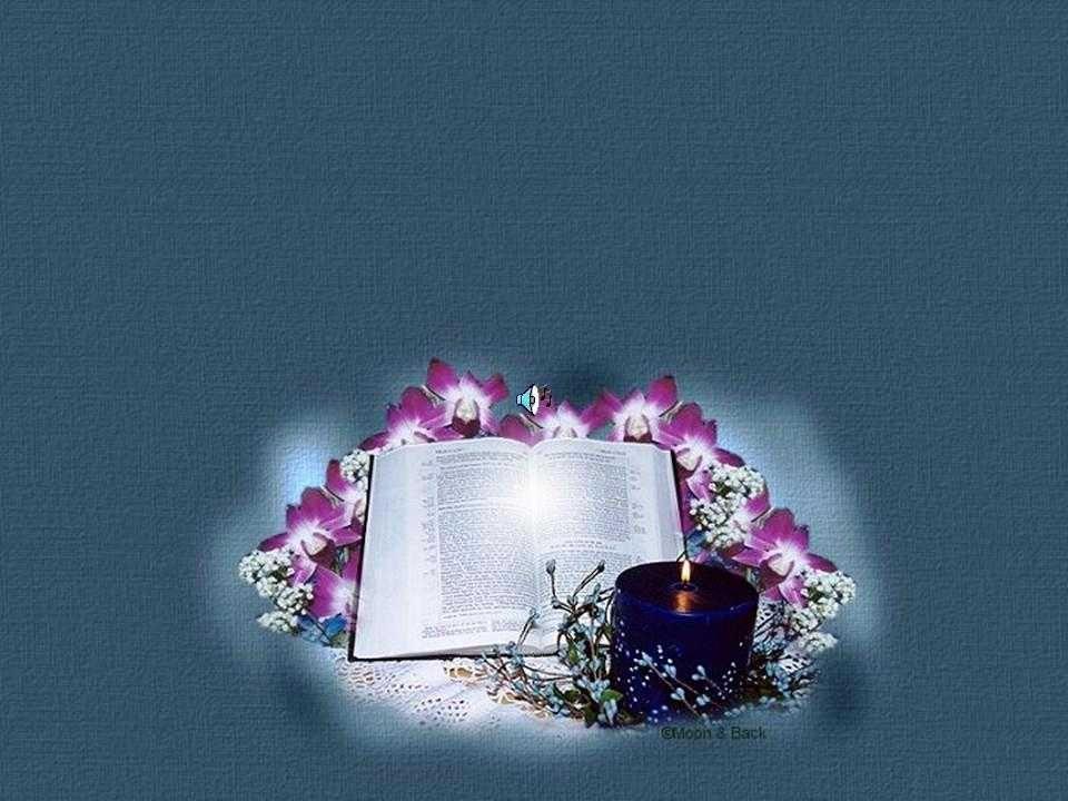 - ¿Es eso la Biblia para ti