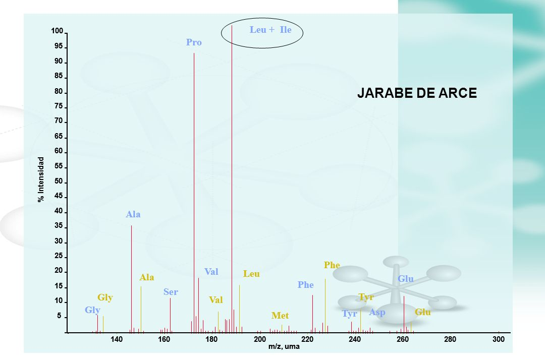 JARABE DE ARCE Leu + Leu + Ile Ile Pro Pro Ala Ala Phe Phe Val Val Leu