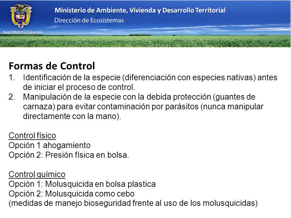 Formas de Control Identificación de la especie (diferenciación con especies nativas) antes de iniciar el proceso de control.
