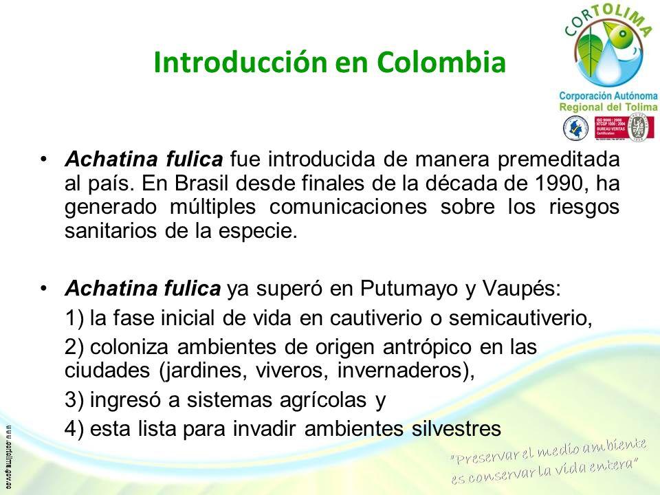 Introducción en Colombia