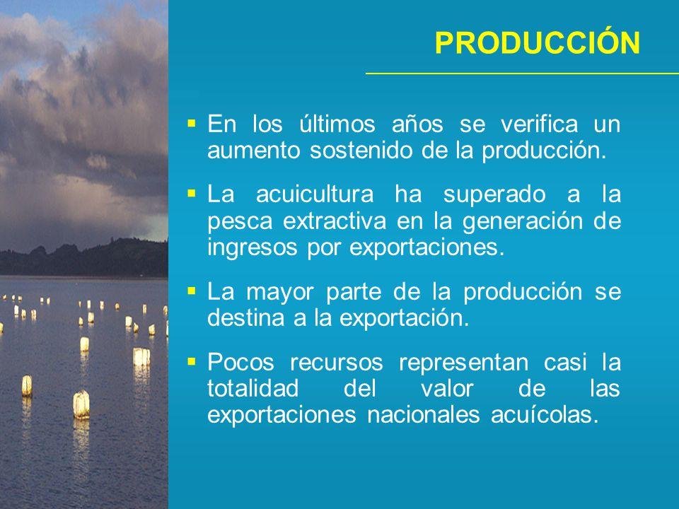PRODUCCIÓN En los últimos años se verifica un aumento sostenido de la producción.