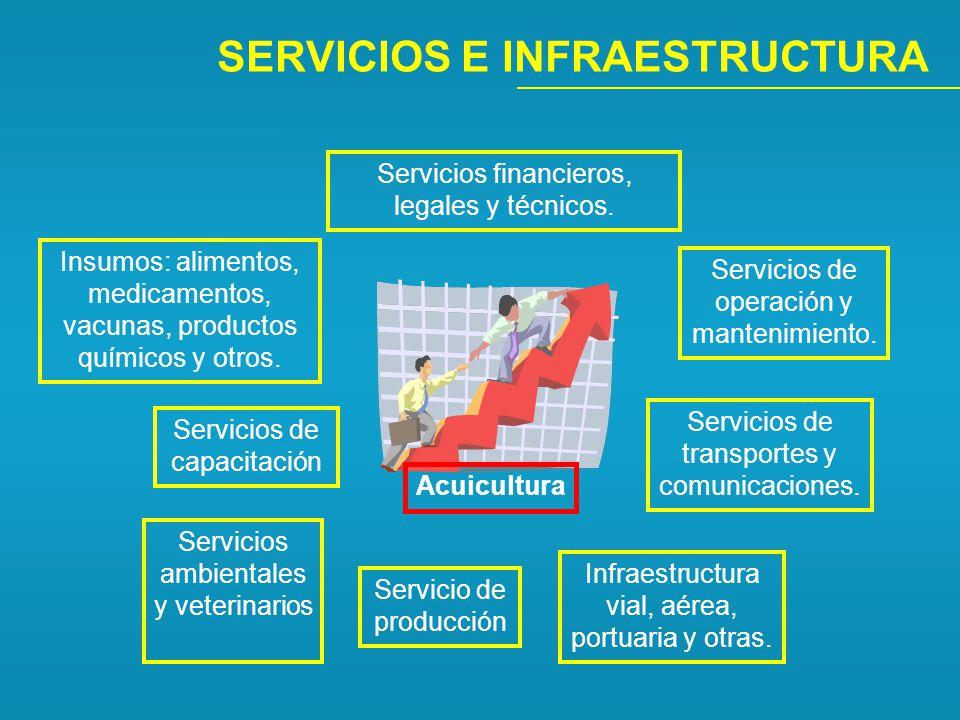 SERVICIOS E INFRAESTRUCTURA