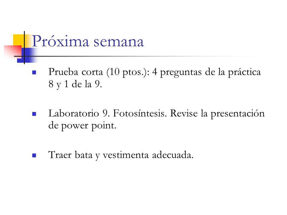 Próxima semana Prueba corta (10 ptos.): 4 preguntas de la práctica 8 y 1 de la 9.